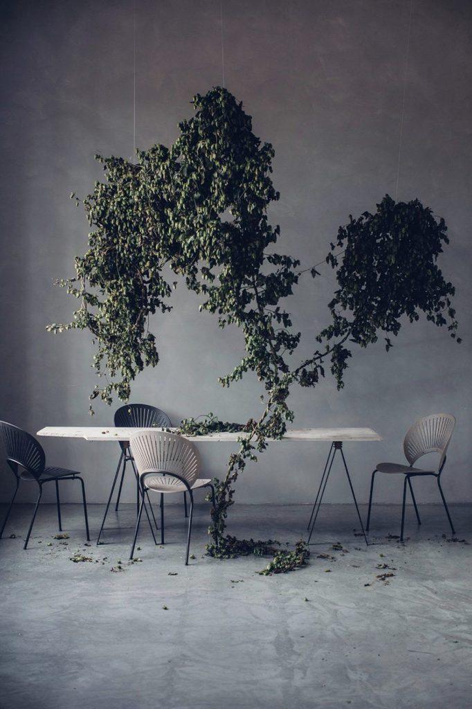 Svævende planter